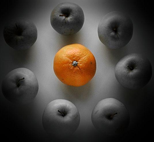 Individuality !, Craig Sunter - Thanx 2 Mil..., Flickr